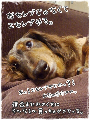1026_06_20121026121057.jpg