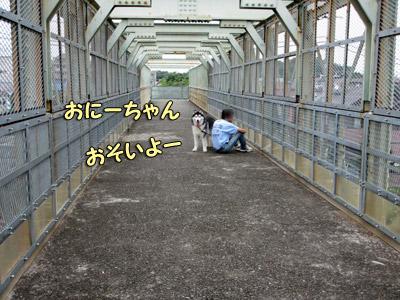 早朝の跨線橋