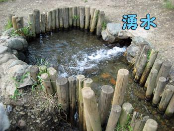 湧水ポイント