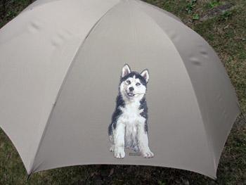 ハスキープリントの傘