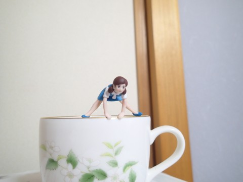 baransufujiko1333.jpg