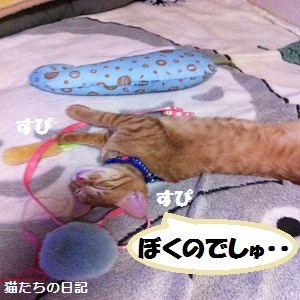 001_20120607001749.jpg