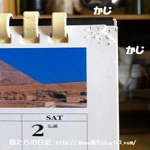 001_20120619003813.jpg