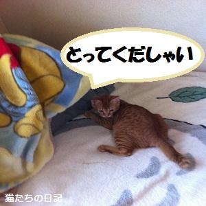 004_20120603215244_20120603232902.jpg