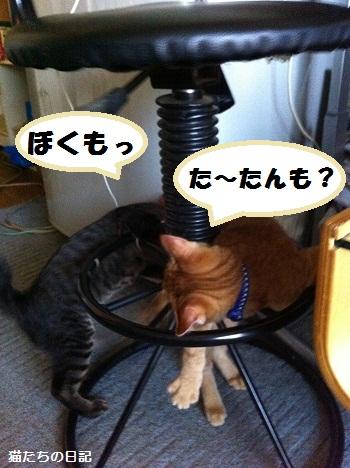 006_20120530055744.jpg