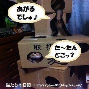 010_20120617021103_20120617053502.jpg