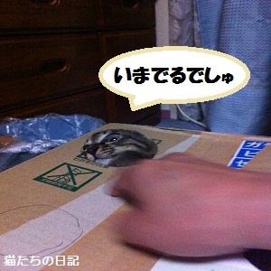 018_20120608041828_20120611105638.jpg