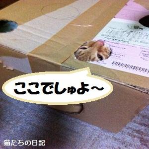 024_20120608042435_20120608052457.jpg