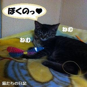029_20120606194031.jpg