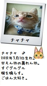 031_20120620010737.jpg