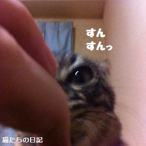 105_20120611112108.jpg