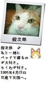 kako-oGegqmUkKHuPWgDk_20120619000252.jpg