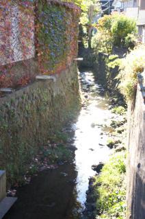 鎌倉道(戸塚):十王堂橋下の流れ