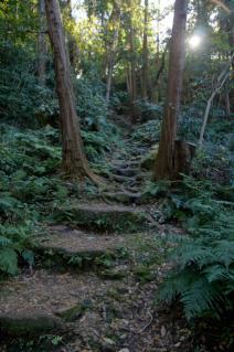 浦賀道(鎌倉):名越切通への登り-2