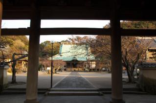 鎌倉・光明寺山門より本堂を望む