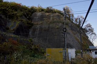 JR横須賀線・田浦隧道脇の斜面
