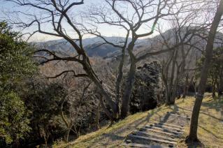 浦賀道(金沢):塚山公園・鹿島台から相模湾方面を望む
