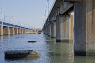 旧東海道:現在の馬入川橋梁を平塚川より見る