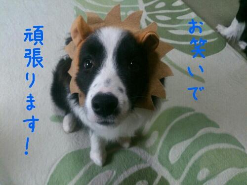 fc2_2014-02-12_01-18-18-128.jpg