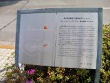 西武東久留米駅 my sky hole 94-樹の情景 説明