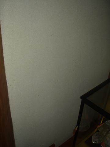 resize0184_20120703104644.jpg