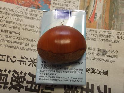 kuri_20120928092614.jpg