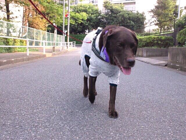fc2blog_20120729214624591.jpg