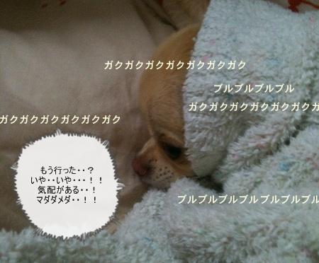 20121112144152806.jpg