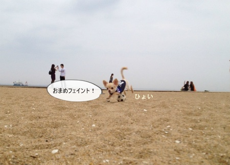 new_036_20120627202558.jpg