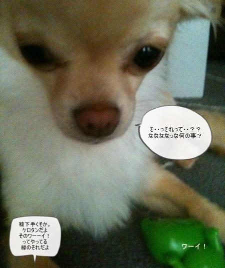 new_060.jpg