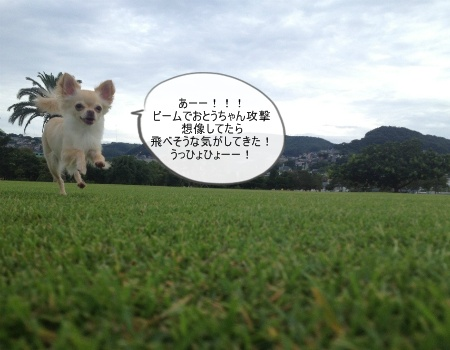 new_094.jpg