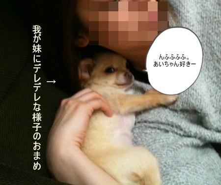 new_095.jpg