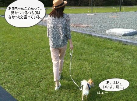 new_146.jpg