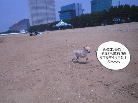new_CIMG3656.jpg