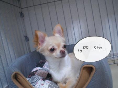 new_CIMG3857.jpg