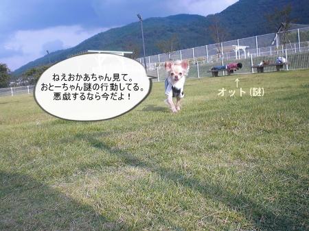 new_CIMG4258.jpg
