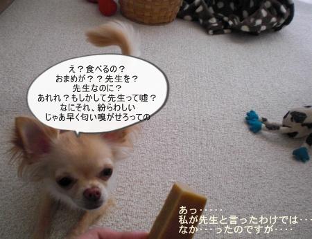 new_CIMG4384.jpg