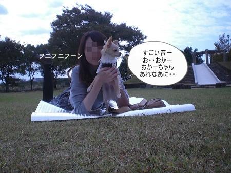 new_CIMG4448.jpg