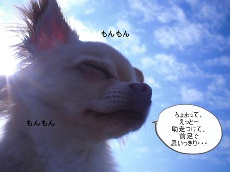 new_CIMG4509.jpg