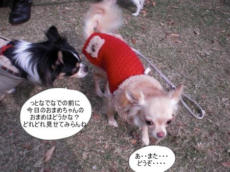 new_CIMG4594.jpg