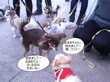 new_CIMG4610.jpg