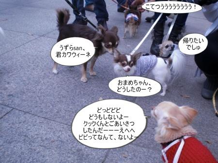 new_CIMG4612.jpg