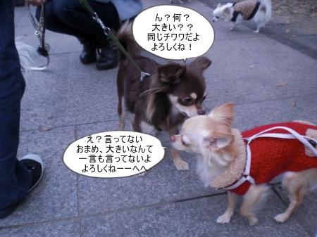 new_CIMG4620.jpg