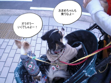 new_CIMG4622.jpg