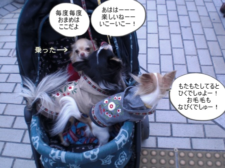 new_CIMG4623.jpg