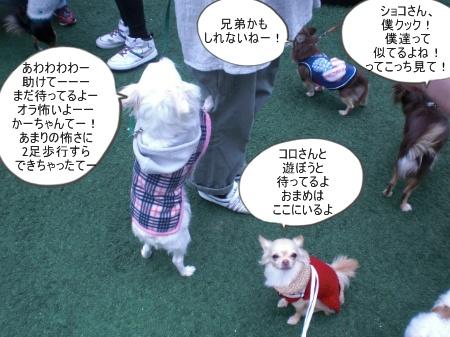 new_CIMG4629.jpg