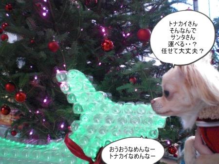 new_CIMG4639_20121109151233.jpg