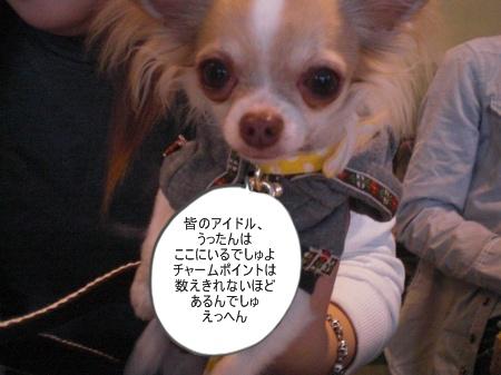 new_CIMG4645.jpg
