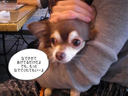 new_CIMG4651.jpg