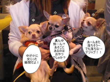 new_CIMG4663.jpg